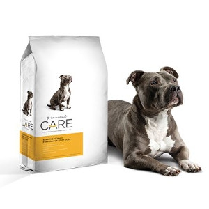 Diamond Care Sensitive Stomach for Adult Dogs 25lb