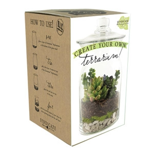 Syndicate Home Garden DIY Terrarium Kit
