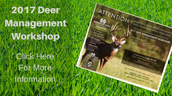 2017 deer management