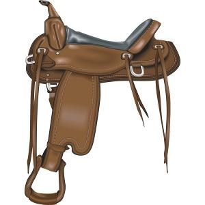 Saddle Sale!