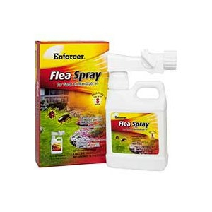 Enforcer® Flea Spray For Yards Concentrate