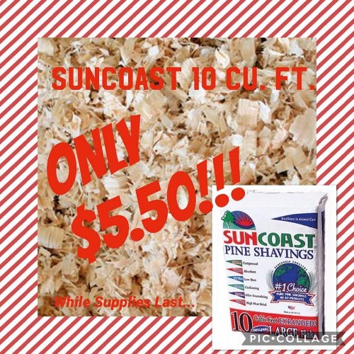 SunCoast 10 cu.ft. for Only $5.50!
