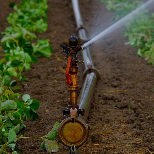 Irrigation & Sprinklers