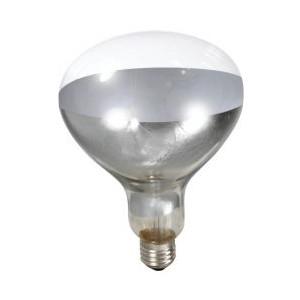 Litlte Giant Clear Heat Lamp Bulb 250 WATT 120 VOLT