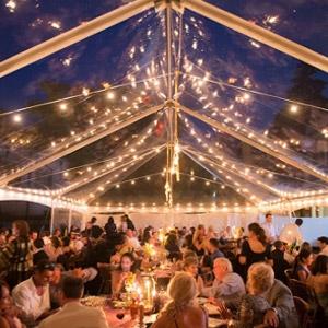 Frame 30' Jumbotrac lite Clear top tent