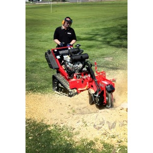 Barreto E30SG Stump Grinder
