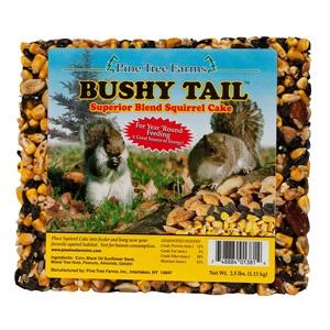 Bushy Tail Squirrel Cake