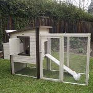 New Age Pet EcoFlex Fremont Chicken Coop