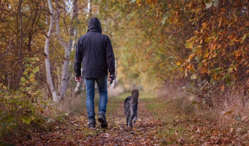 Tips to Make Autumn a Happy and Healthy Time for You and Your Pet