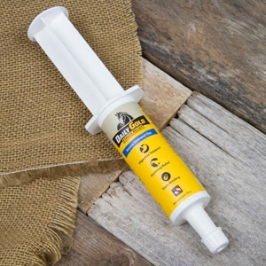 Redmond™ Equine Daily Gold Quick Relief Syringe