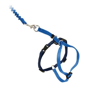 PetSafe® Come With Me Kitty™ Harness & Bungee Leash