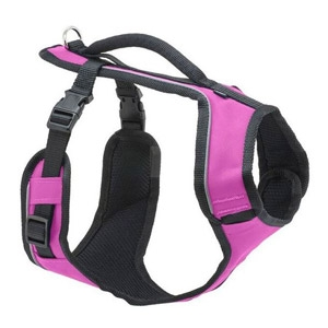 PetSafe® EasySport Harness