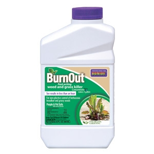 BurnOut® Weed & Grass Killer Concentrate