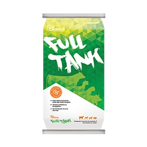 Sunglo® Full Tank Show Supplement