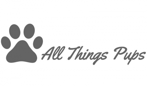 Business Spotlight: All Things Pups