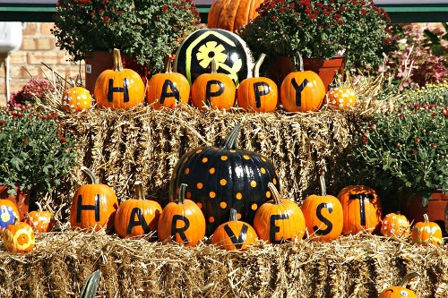 Harvest Days Celebration
