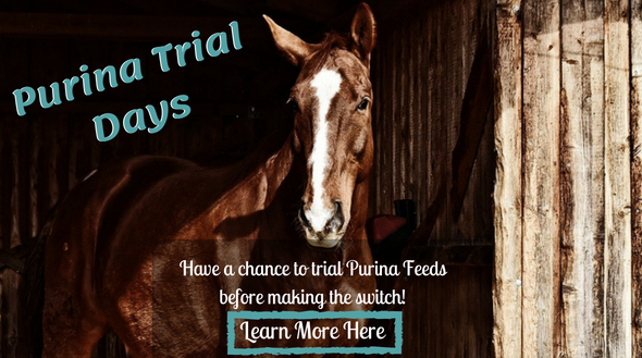 Purina Trial Days