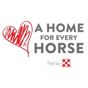 Purina Donations For A Home For Every Horse