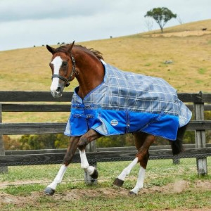$5 Off WB 1200D & 1600D Horse Blankets