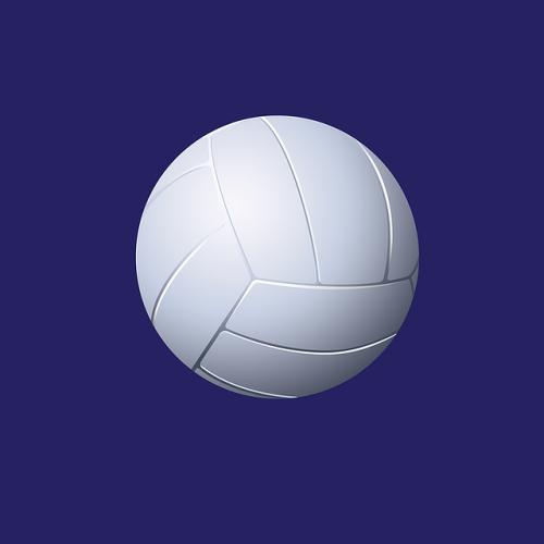 Tigerettes Volleyball vs. Boyd