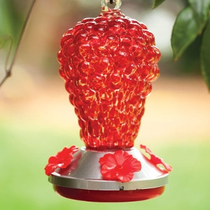 15% Off Hummingbird Feeder