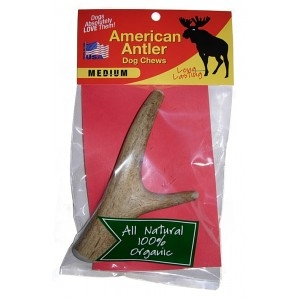 Medium Antler Dog Chew