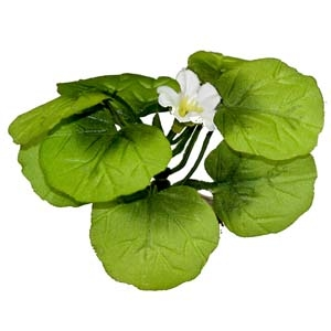 ColorBurst Florals® Broad Lily-Leaf With Flowering BudsXL