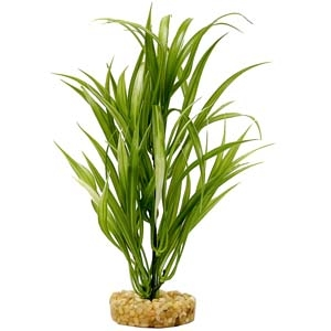 ColorBurst Florals® Gravel Base Plant – Sword Plant – Green