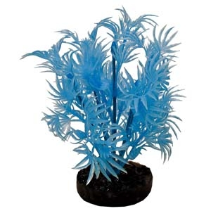 ColorBurst Florals® Dragon Leaf Plant – Neon Blue