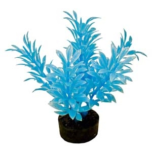 ColorBurst Florals® Exotic Mini Plant – Neon Blue