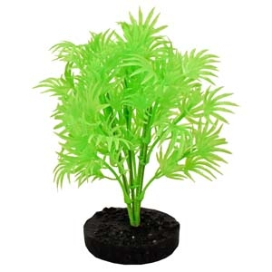 ColorBurst Florals® Dragon Leaf Plant – Neon Green