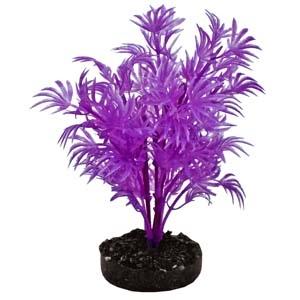 ColorBurst Florals® Dragon Leaf Plant – Neon Purple