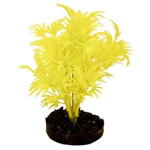 ColorBurst Florals® Dragon Leaf Plant – Neon Yellow