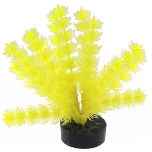 ColorBurst Florals® Foxtail Plant – Neon Yellow