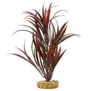 ColorBurst Florals® Gravel Base Plant – Sword Plant – Red