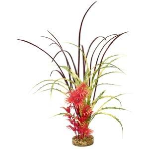 ColorBurst Florals® Fiesta Aqua Beauty – Red/Green