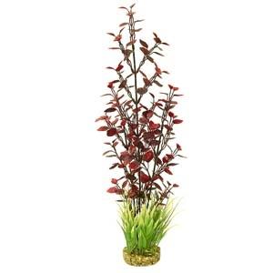 ColorBurst Florals® Fiesta Aqua Jungle – Red/Green