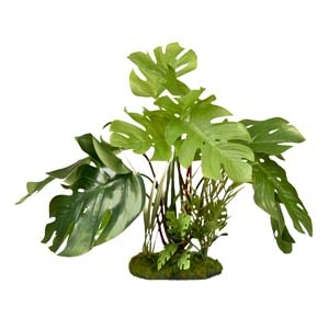 ColorBurst Florals® Split Green Leaf Philodendron