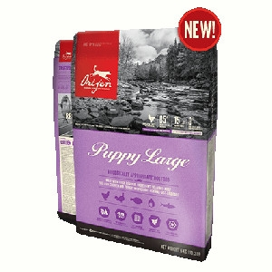 Orijen Puppy Large Dry Food
