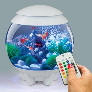 Oase® biOrb® Halo 15L Fish Tank with MCR