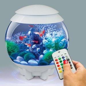 Oase® biOrb® Halo 15L Fish Tank with MCR
