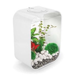 Oase® biOrb® Life 15L Fish Tank