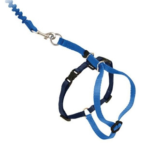 PetSafe® Come With Me Kitty™ Cat Harness & Bungee Leash