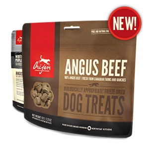 Orijen Freeze-Dried Angus Beef Treats for Dogs- 3.25oz