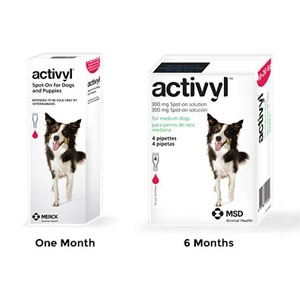 Activyl® Spot On Flea Killer for Medium Dogs