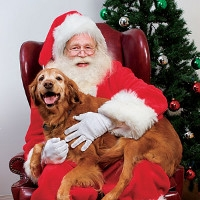 Pet Photos with Santa at Westfield Feed