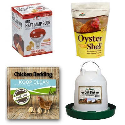10% OFF Chick Supplies