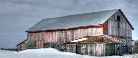 Farm & Equine Newsletter