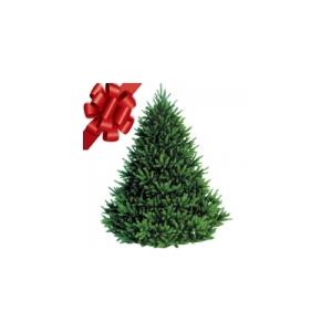 $5 Off Christmas Trees