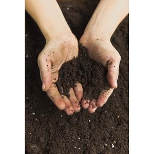 Top Soil 40lb Bag $1.99